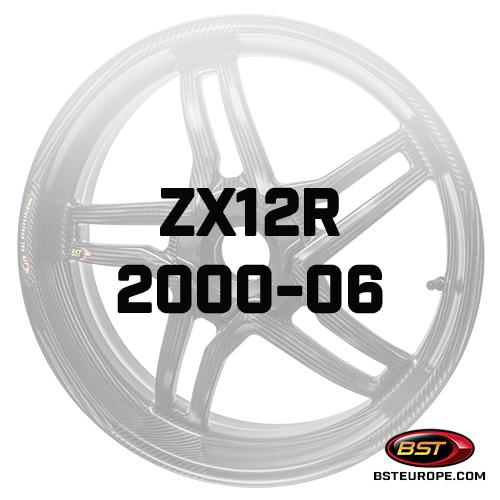 ZX12R-2000-06.jpg